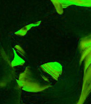 Profile picture of stugg